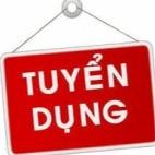 Công Ty Cổ Phần Tập Đoàn Mit Việt Nam