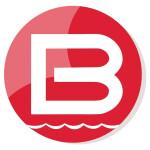 Công Ty Cổ Phần Babylons logo