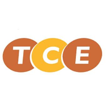Công Ty Cổ Phần Thiết Bị Và Dịch Vụ Tce logo