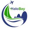 Công Ty CP Thương Mại Dịch Vụ Halobay logo
