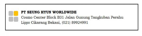 Pt Seung Hyun Worldwide