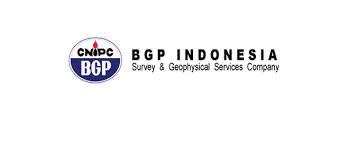 Pt. Bgp Indonesia