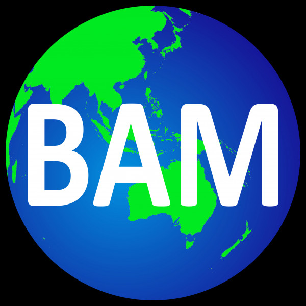 Pt Bam