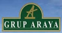 Araya Group