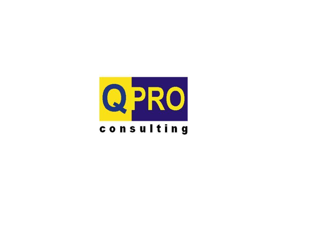 Pt Quality Professional