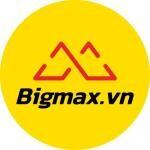 Công Ty TNHH Bigmax Quốc Tế logo