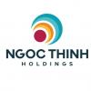 Công Ty Cổ Phần Ngọc Thịnh Holdings logo