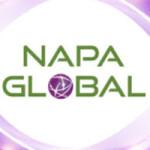 Công Ty Cổ Phần Napa Global