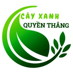 Công Ty CPđt Và Pt Cây Xanh Đô Thị Quyền Thắng