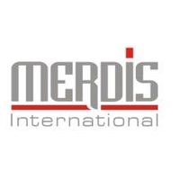 Pt Merdis International