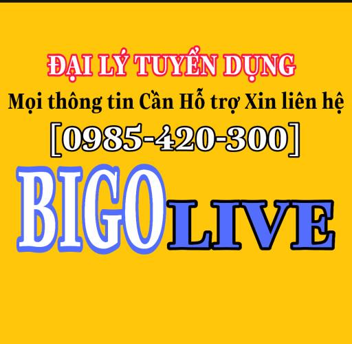Đại Lý Tuyển Dụng Idol Livestream Vn App Bigo Live