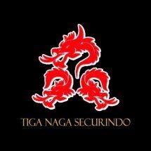 Pt Tiga Naga Securindo