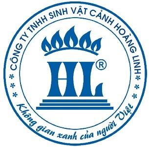 Công Ty TNHH Svc Hoàng Linh