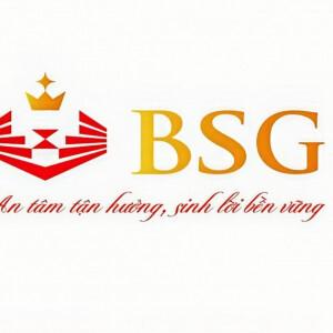 Bsg Holding