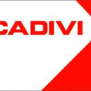 Công Ty CP Dây Cáp Điện Việt Nam (Cadivi)